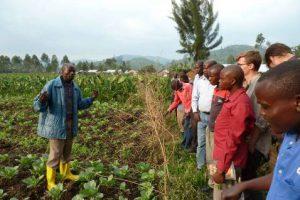 Sipendiat Pascal gibt Lehrseminare auf seinem Kohlfeld für Schulklassen